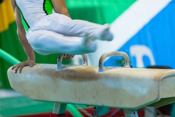 Gymnast Horse Speed Blur