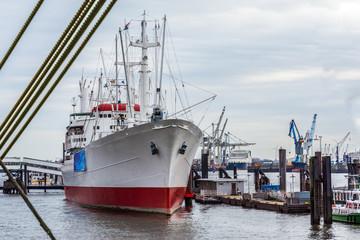 2225-Hamburg-an der Landungsbrücke