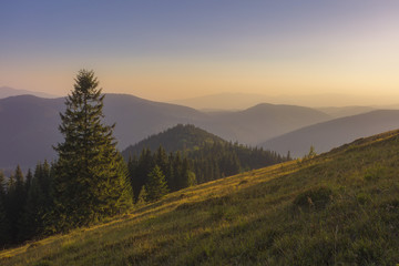 On a sunny summer day, the view from the plateau to the forest and mountains. Blue sky, lots of green grass and trees.