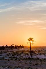Sunrise in the desert in Tunisia