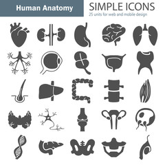 Human anatomy simple icons set