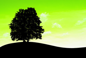Ecological landscape. Silhouette of deciduous tree in the meadow, on the yellow-green background.