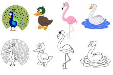 Coloring page set with different birds