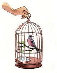 Watercolor sketch of a hand holding a cage with a bird