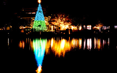 Christmas tree is decorated with light, standing besides a lake