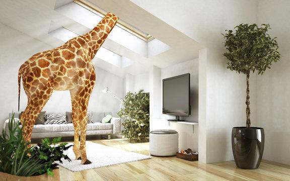 Außergewöhnliche Giraffenwohnung
