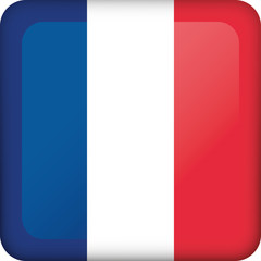 Icon representing square button flag of France. Ideal for catalogs of institutional materials and geography