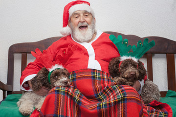 Santa Claus with two dogs with reindeer horns