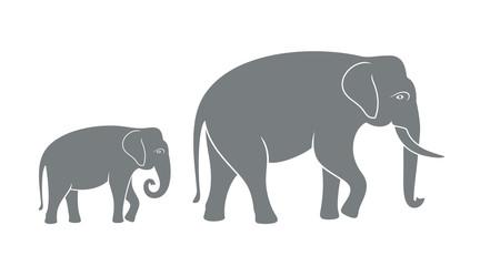Elephant family. Isolated elephant on white background