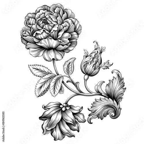 rose flower vintage baroque victorian frame border floral ornament leaf scroll engraved retro. Black Bedroom Furniture Sets. Home Design Ideas