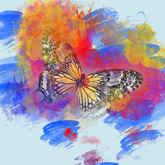 Artsy Watercolor butterfly. Colorful paint splatters
