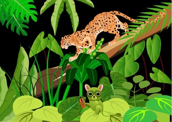 Leopard and tarsier in the night jungle, wildlife theme, backgound. Vector