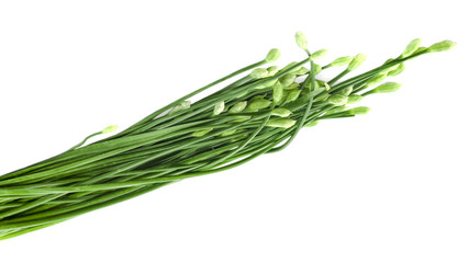 Chinese chives flower on white background