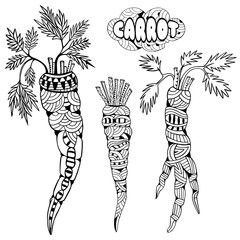 Carrots. Doodle and zentangle style. Hand drawn coloring book. Vector illustration.