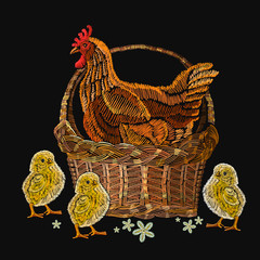 Embroidery hen and chickens in a basket. Classical embroidery beautiful yellow chickens and hen. Template for clothes, textiles, t-shirt design