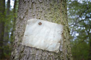 weißes Papier am Baum