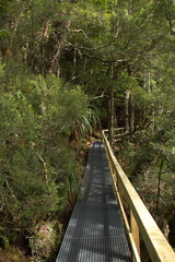 Dove Lake Circuit in Cradle Mountain NP in Tasmania