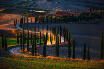 Tuscany, rural sunset landscape. Countryside farm, cypresses trees, green field, sun light and car on the road. Italy, Europe.