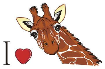 giraffe, animal, neck, long, orange, brown, spotted, Africa, zoo,spots, illustration, Kenya, wild, i love giraffe