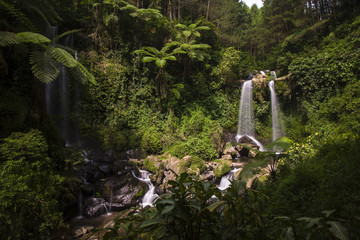 a photo of a waterfall