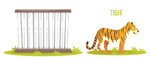 illustration of tiger