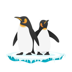 illustration of penguins