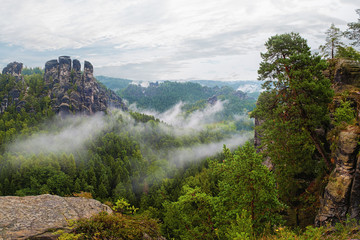 Beautiful nature in the mountains in rainy and foggy weather. Bastei - reserve in Saxony.