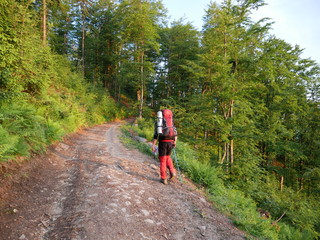 Man in the mountains and forest on a hiking trip with a backpack and poles.