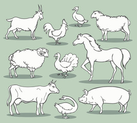Farm animals sketch. Livestock doodle set vector illustration like turkey and horse, sheep and chicken, goat and sheep