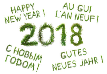 2018 New Year. Two thousand eighteen. Сongratulation words Happy New Year in English, Russian, French and German. Objects are made of a pine tree branches isolated on white background