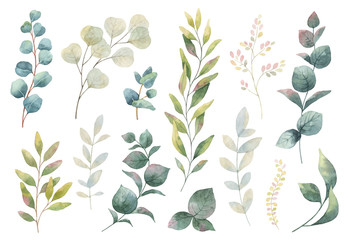 Hand drawn vector watercolor set of herbs, wildflowers and spices. Fototapete