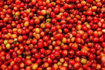fresh coffee beans for background