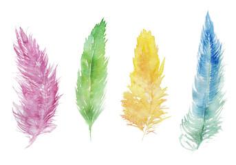 いろいろな色の羽根 水彩イラスト