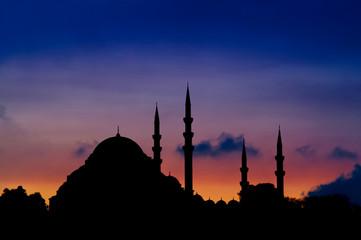 Istanbul Evening Skyline
