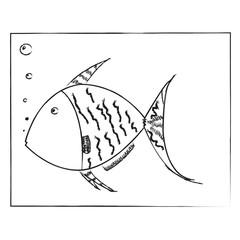 fish on black blackboard