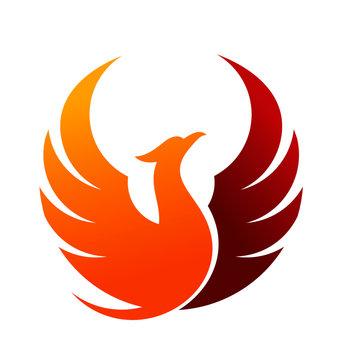 luxury circle phoenix logo template
