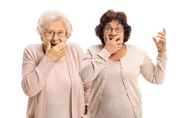 Two elderly women gesturing surprise