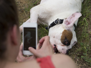 Owner taking a picture of her white boxer dog