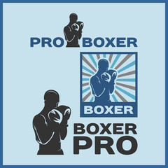 BOXER PRO, JAB AND KNOCK OUT