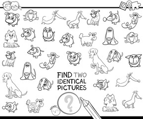 find two identical dogs educational color book