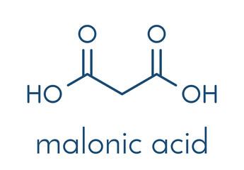Malonic acid organic dicarboxylic acid molecule. Skeletal formula.