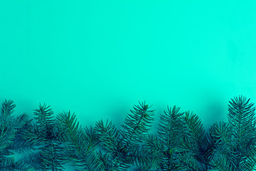 Christmas tree branches on bright isolated background as a border or template for christmas card