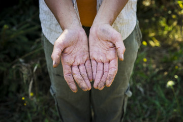 High angle view of beekeeper showing dirty hands while standing on field