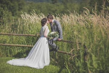 Newlywed couple kissing on grassy field during sunny day