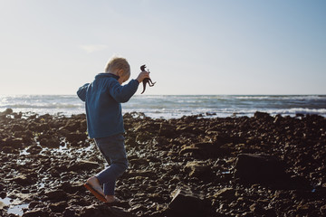 Boy holding toy dinosaur walking on beach