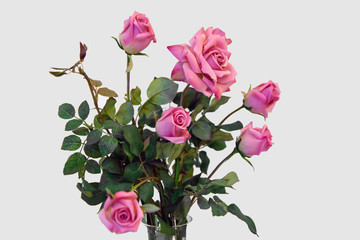 Roses in a vase isolated. Flowers for the beloved. Pink rose is a traditional Declaration of love.