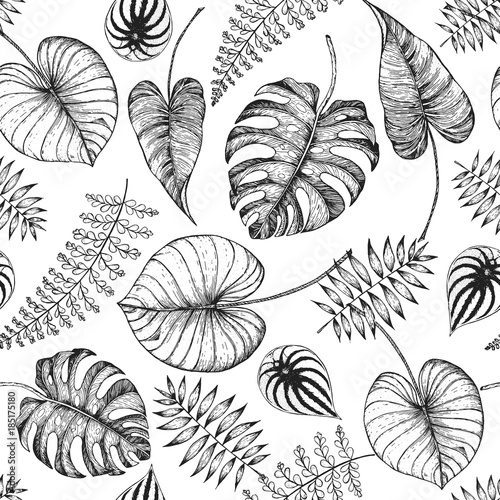 Tropical palm leaves seamless pattern. Vector illustration leaves of ...