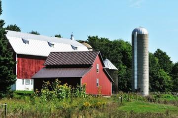 Barns with Silo