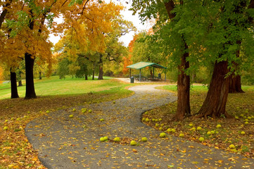 An autumn path in a city park.