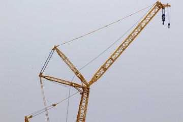 Crane in Paris